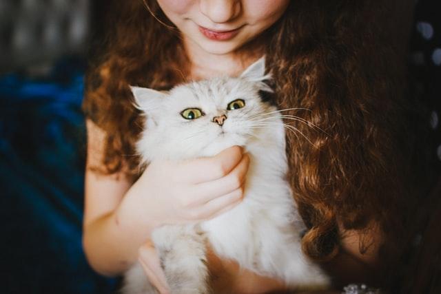 kids pet